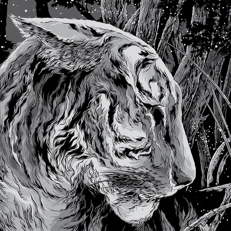 Tiger by Ken Taylor